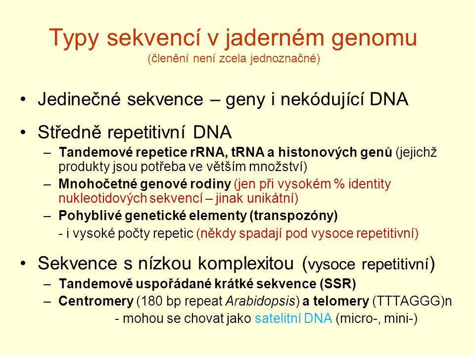 Typy sekvencí v jaderném genomu (členění není zcela jednoznačné) Jedinečné sekvence – geny i nekódující DNA Středně repetitivní DNA –Tandemové repetice rRNA, tRNA a histonových genů (jejichž produkty jsou potřeba ve větším množství) –Mnohočetné genové rodiny (jen při vysokém % identity nukleotidových sekvencí – jinak unikátní) –Pohyblivé genetické elementy (transpozóny) - i vysoké počty repetic (někdy spadají pod vysoce repetitivní) Sekvence s nízkou komplexitou ( vysoce repetitivní ) –Tandemově uspořádané krátké sekvence (SSR) –Centromery (180 bp repeat Arabidopsis) a telomery (TTTAGGG)n - mohou se chovat jako satelitní DNA (micro-, mini-)