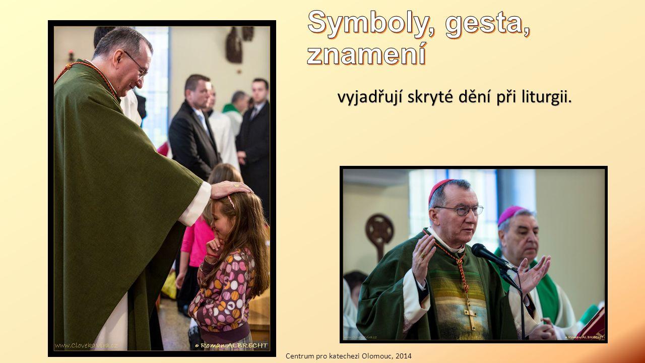 vyjadřují skryté dění při liturgii. Centrum pro katechezi Olomouc, 2014