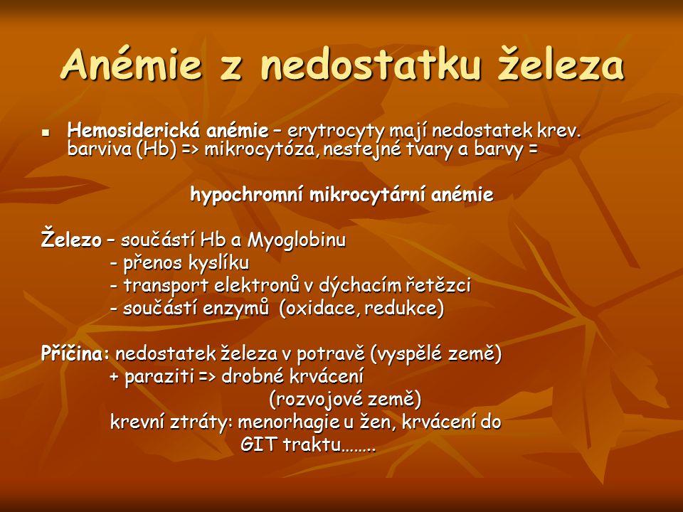 Anémie z nedostatku železa Hemosiderická anémie – erytrocyty mají nedostatek krev. barviva (Hb) => mikrocytóza, nestejné tvary a barvy = Hemosiderická