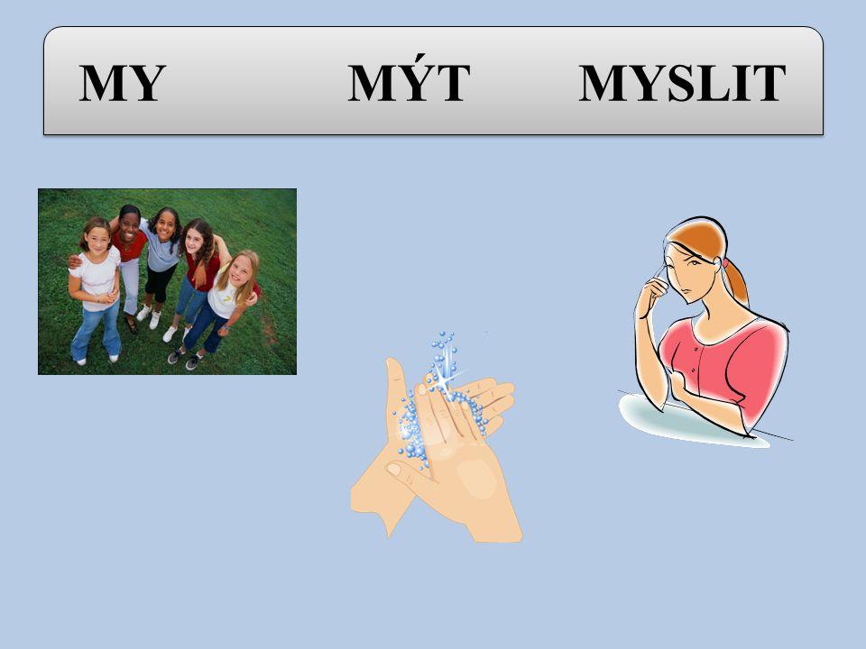 Vyjmenovaná slova po M : MY - MÝT - MYSLIT MÝLIT SE - HMYZ - MYŠ HLEMÝŽĎ - MÝTIT - ZAMYKAT SMÝKAT - DMÝCHAT - CHMÝŘÍ NACHOMÝTNOUT SE - LITOMYŠL MY - M