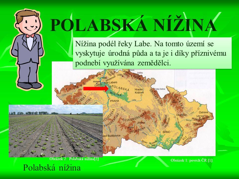 POLABSKÁ NÍŽINA Nížina podél řeky Labe. Na tomto území se vyskytuje úrodná půda a ta je i díky příznivému podnebí využívána zemědělci. Polabská nížina