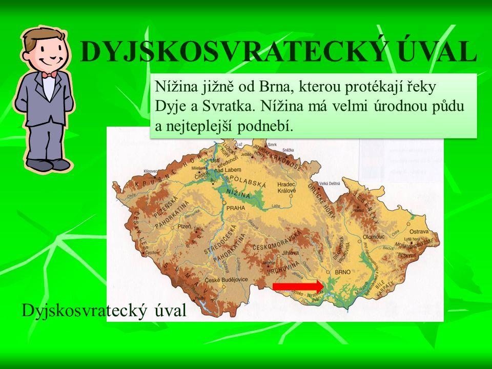 DYJSKOSVRATECKÝ ÚVAL Nížina jižně od Brna, kterou protékají řeky Dyje a Svratka. Nížina má velmi úrodnou půdu a nejteplejší podnebí. Dyjskosvratecký ú