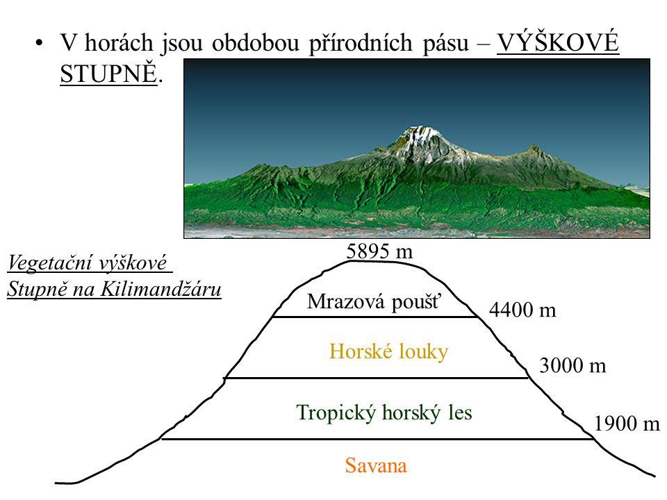 Podnebí a vegetační pásy PODNEBNÝ PÁSVEGETACE Vlhký tropický pástropické deštné lesy Střídavě vlhký trop.
