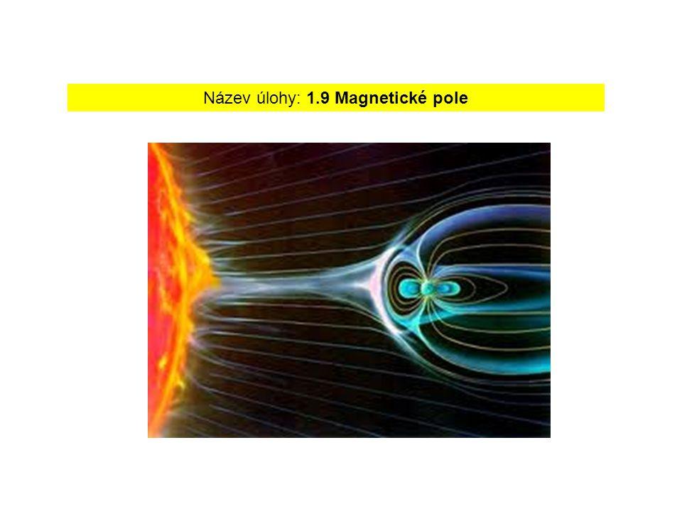Název úlohy: 1.9 Magnetické pole