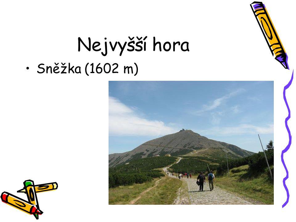 Nejvyšší hora Sněžka (1602 m)