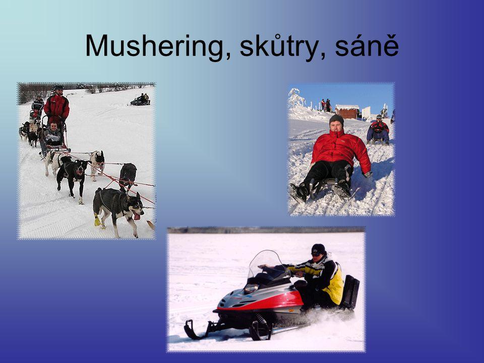 Mushering, skůtry, sáně