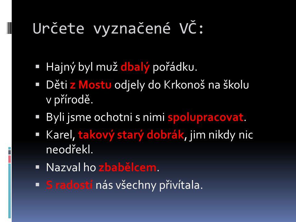 Určete vyznačené VČ:  Hajný byl muž dbalý pořádku.