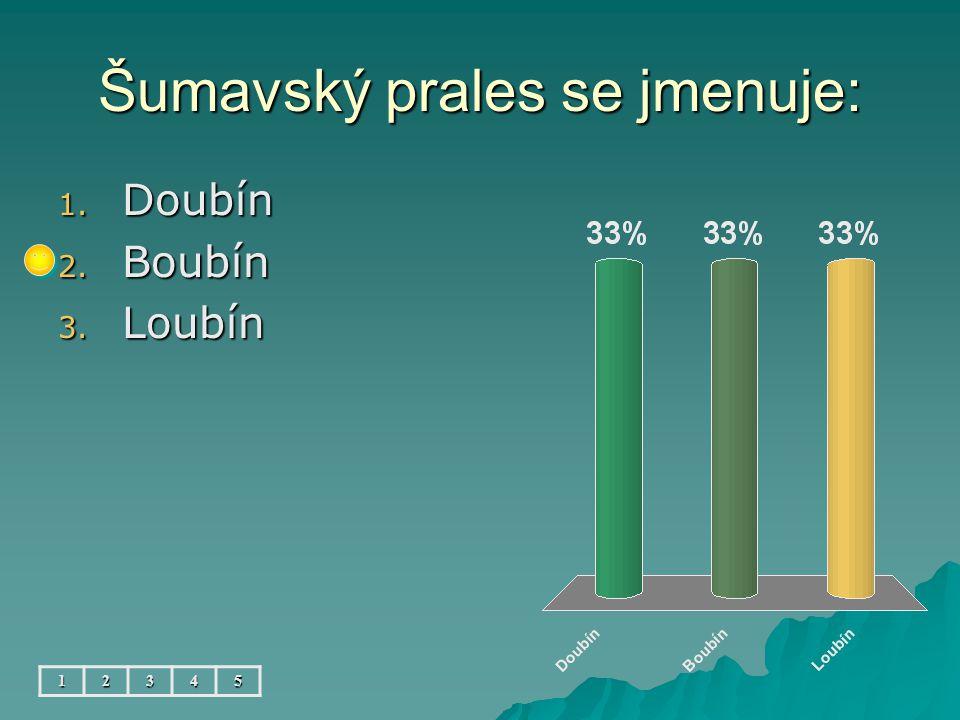 Šumavský prales se jmenuje: 12345 1. Doubín 2. Boubín 3. Loubín