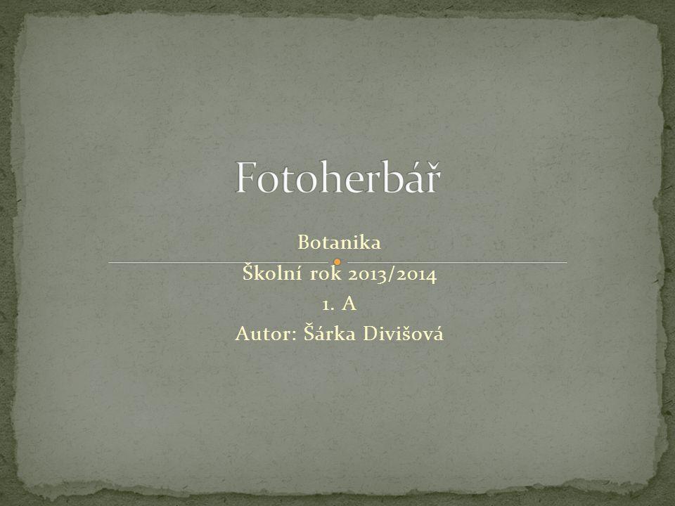 Botanika Školní rok 2013/2014 1. A Autor: Šárka Divišová