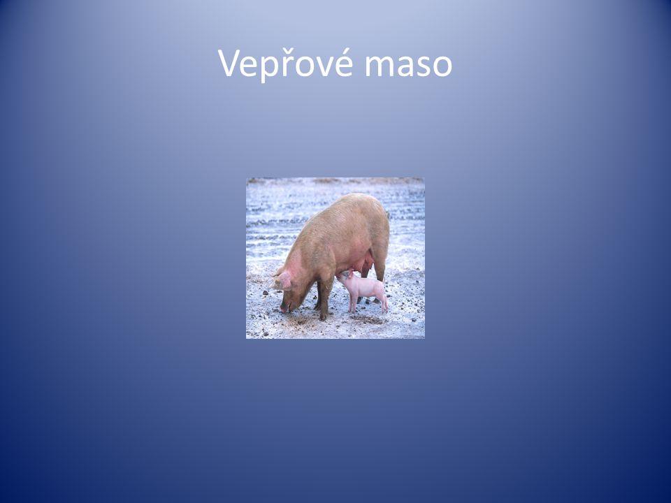 Skopové maso,kozí