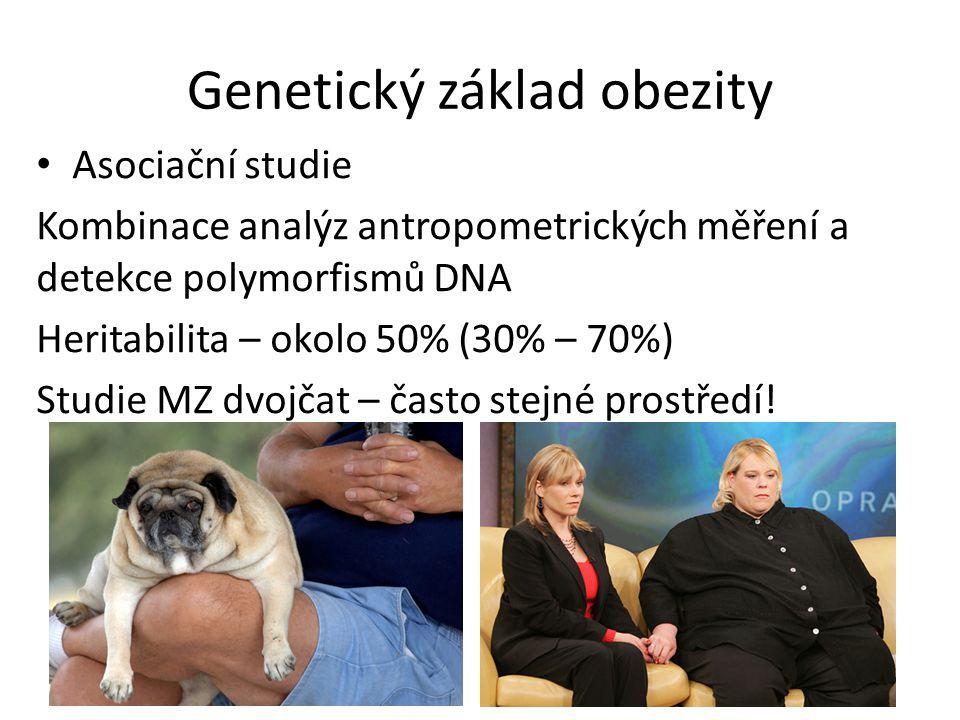 Genetický základ obezity Asociační studie Kombinace analýz antropometrických měření a detekce polymorfismů DNA Heritabilita – okolo 50% (30% – 70%) Studie MZ dvojčat – často stejné prostředí!