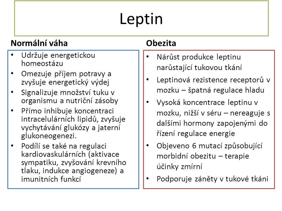 Leptin Normální váha Udržuje energetickou homeostázu Omezuje příjem potravy a zvyšuje energetický výdej Signalizuje množství tuku v organismu a nutriční zásoby Přímo inhibuje koncentraci intracelulárních lipidů, zvyšuje vychytávání glukózy a jaterní glukoneogenezi.