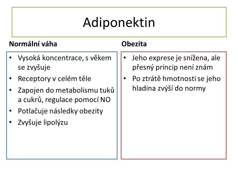 Adiponektin Normální váha Vysoká koncentrace, s věkem se zvyšuje Receptory v celém těle Zapojen do metabolismu tuků a cukrů, regulace pomocí NO Potlačuje následky obezity Zvyšuje lipolýzu Obezita Jeho exprese je snížena, ale přesný princip není znám Po ztrátě hmotnosti se jeho hladina zvýší do normy