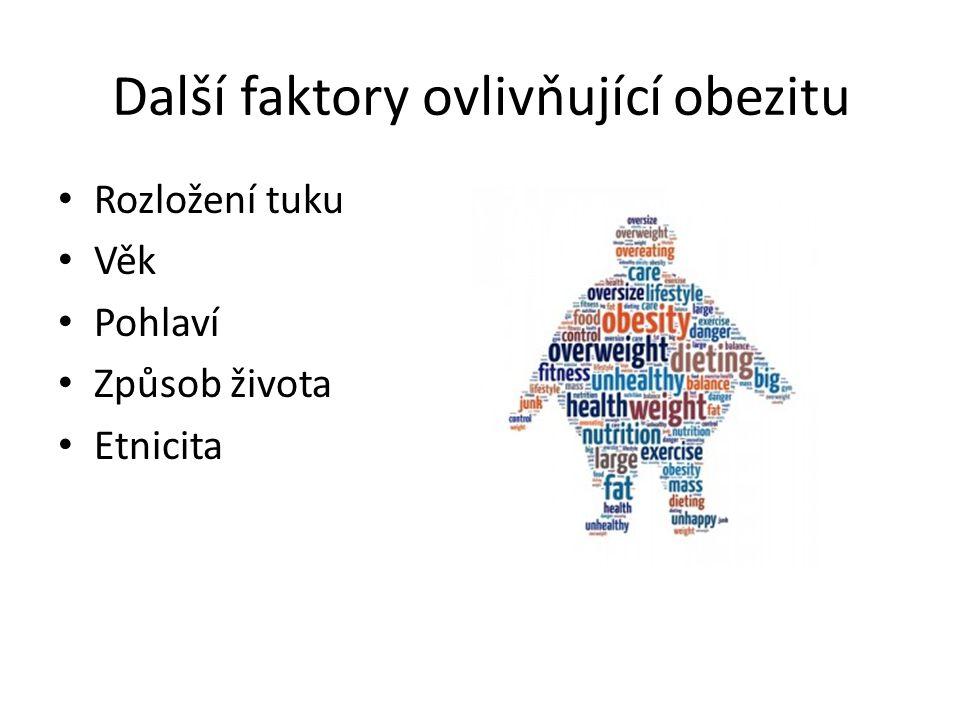 Další faktory ovlivňující obezitu Rozložení tuku Věk Pohlaví Způsob života Etnicita