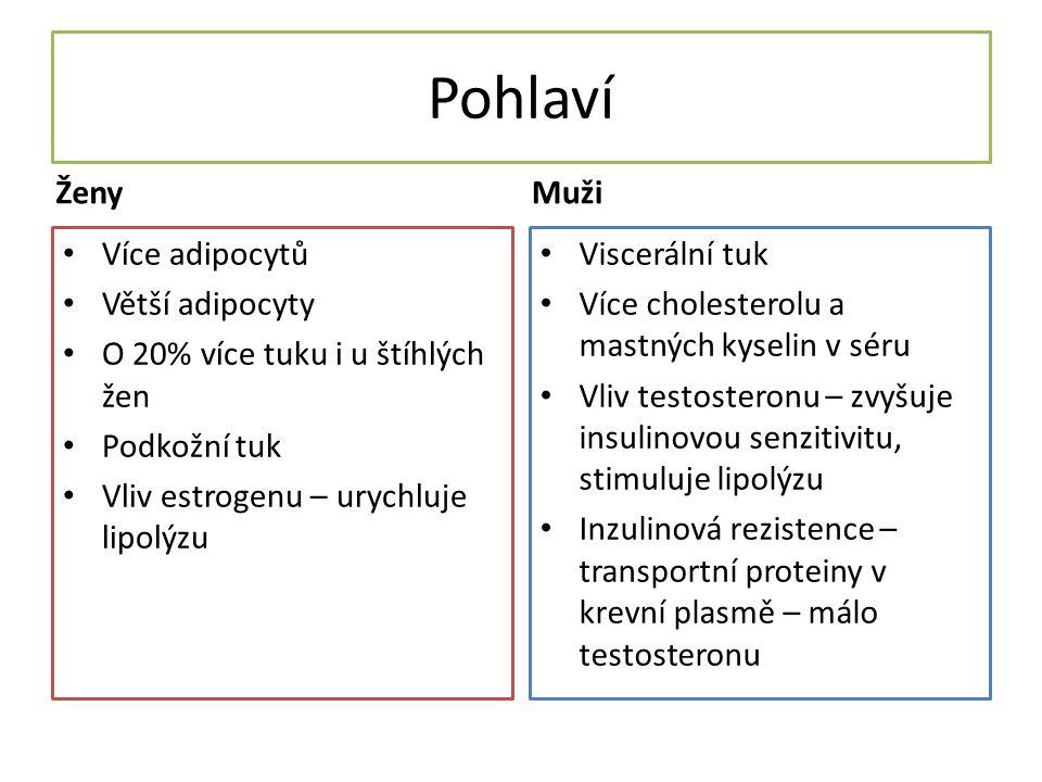 Pohlaví Ženy Více adipocytů Větší adipocyty O 20% více tuku i u štíhlých žen Podkožní tuk Vliv estrogenu – urychluje lipolýzu Muži Viscerální tuk Více cholesterolu a mastných kyselin v séru Vliv testosteronu – zvyšuje insulinovou senzitivitu, stimuluje lipolýzu Inzulinová rezistence – transportní proteiny v krevní plasmě – málo testosteronu