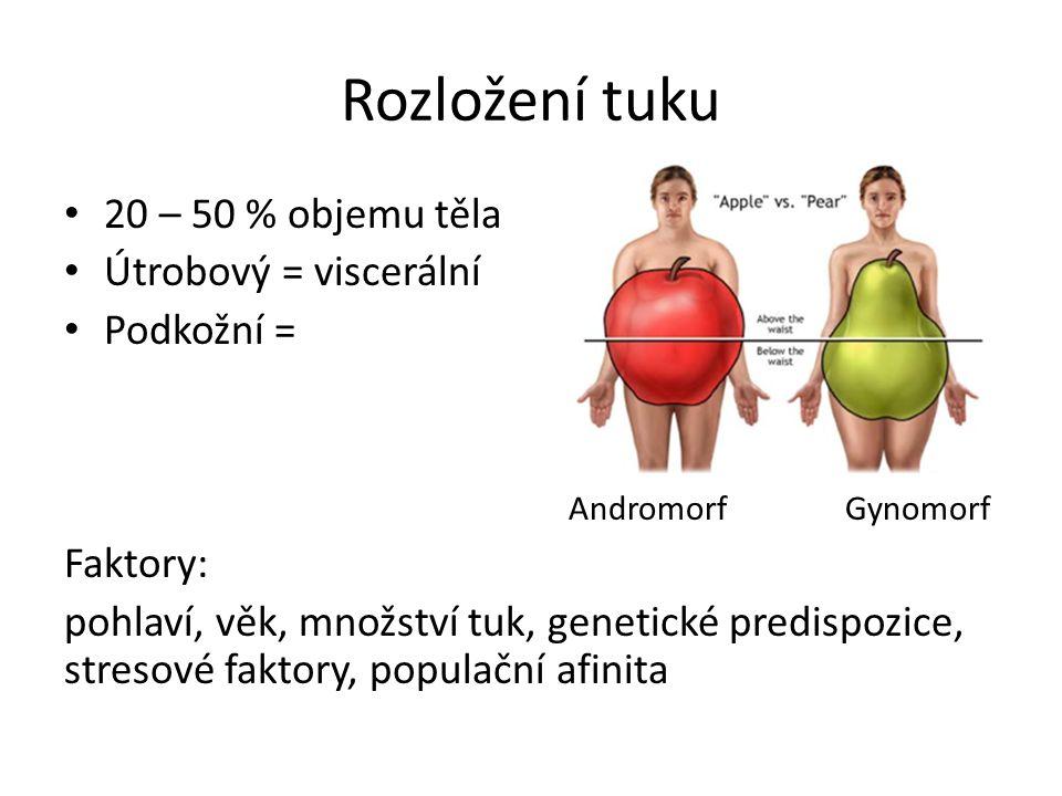 Rozložení tuku 20 – 50 % objemu těla Útrobový = viscerální Podkožní = Andromorf Gynomorf Faktory: pohlaví, věk, množství tuk, genetické predispozice, stresové faktory, populační afinita