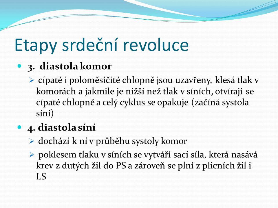 Etapy srdeční revoluce 3.