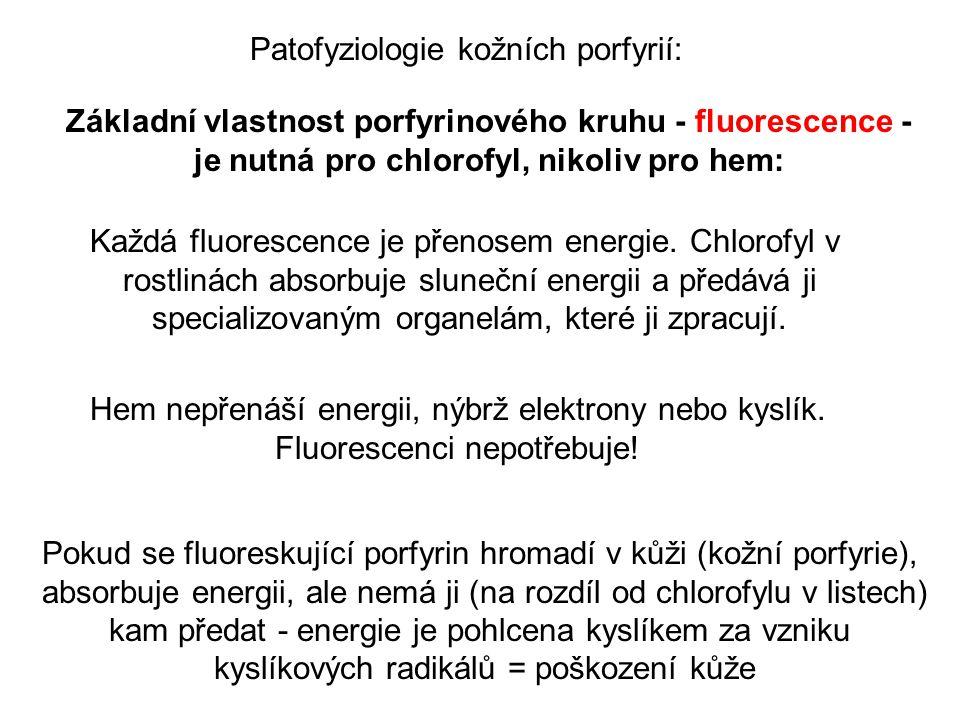 Základní vlastnost porfyrinového kruhu - fluorescence - je nutná pro chlorofyl, nikoliv pro hem: Každá fluorescence je přenosem energie.