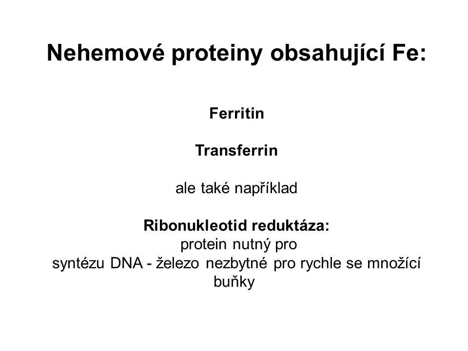 Nehemové proteiny obsahující Fe: Ferritin Transferrin ale také například Ribonukleotid reduktáza: protein nutný pro syntézu DNA - železo nezbytné pro rychle se množící buňky