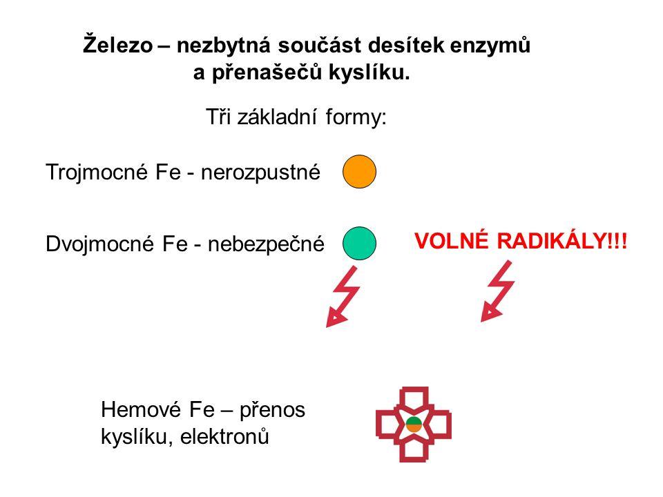 Hemoproteiny: obsahují železo ve formě hemu Hem: porfyrinový kruh s atomem železa