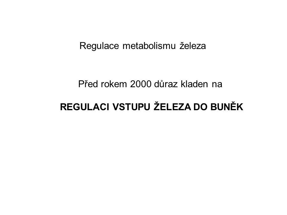 Regulace metabolismu železa Před rokem 2000 důraz kladen na REGULACI VSTUPU ŽELEZA DO BUNĚK