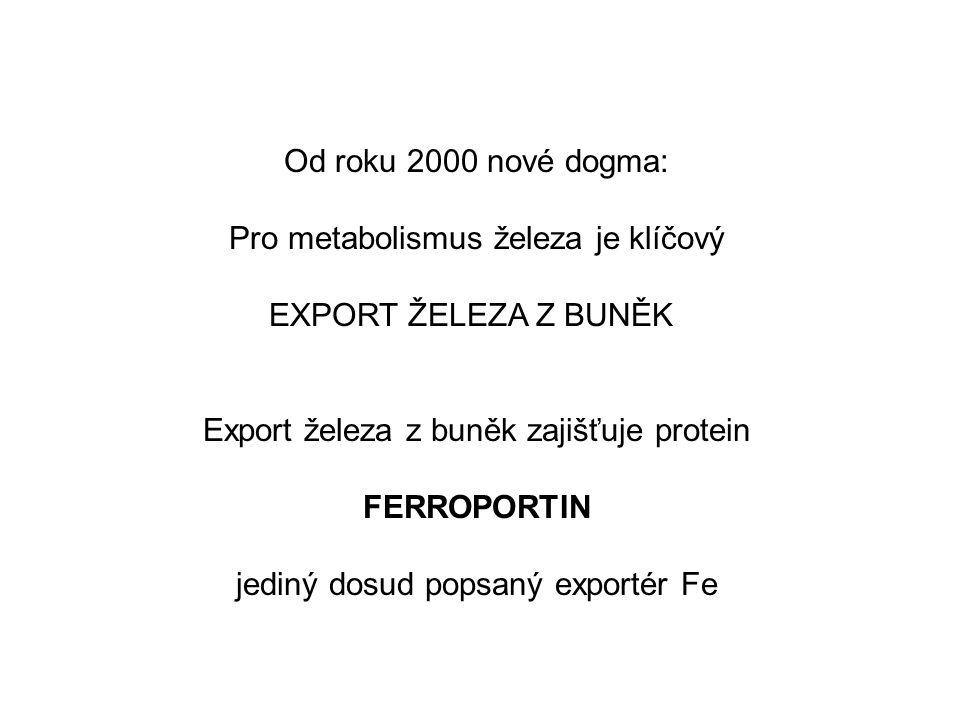 Od roku 2000 nové dogma: Pro metabolismus železa je klíčový EXPORT ŽELEZA Z BUNĚK Export železa z buněk zajišťuje protein FERROPORTIN jediný dosud popsaný exportér Fe