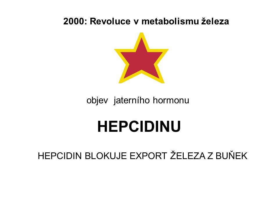 objev jaterního hormonu HEPCIDINU 2000: Revoluce v metabolismu železa HEPCIDIN BLOKUJE EXPORT ŽELEZA Z BUŇEK