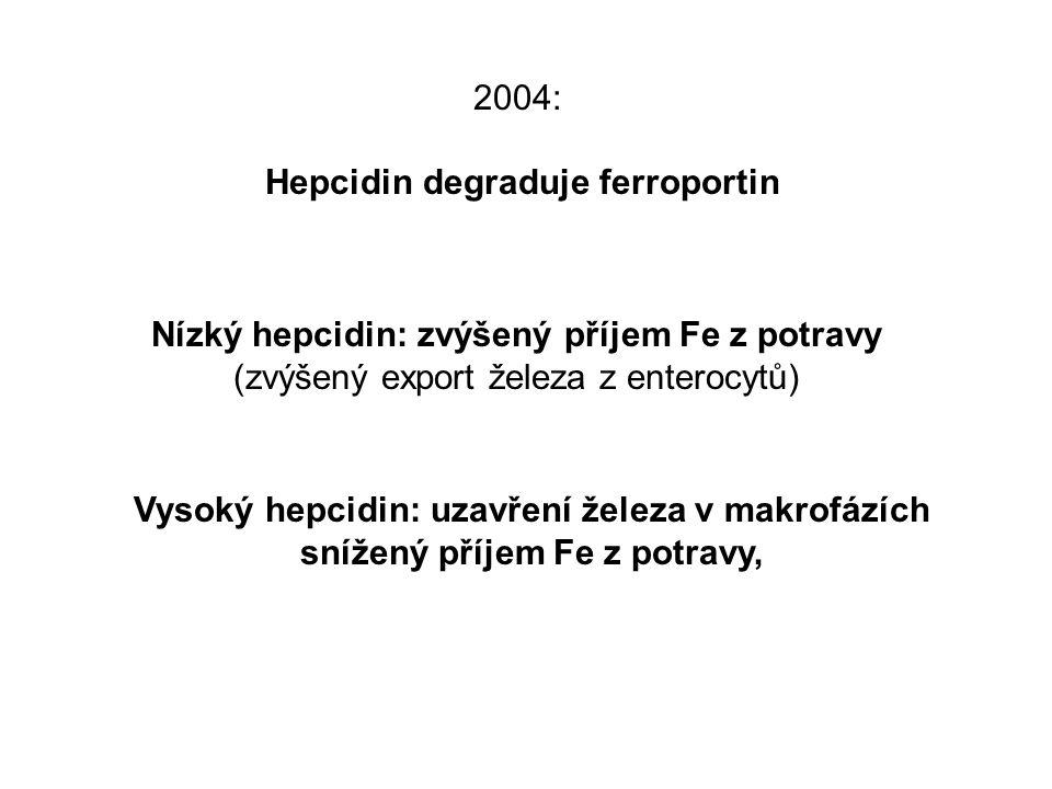 2004: Hepcidin degraduje ferroportin Nízký hepcidin: zvýšený příjem Fe z potravy (zvýšený export železa z enterocytů) Vysoký hepcidin: uzavření železa v makrofázích snížený příjem Fe z potravy,
