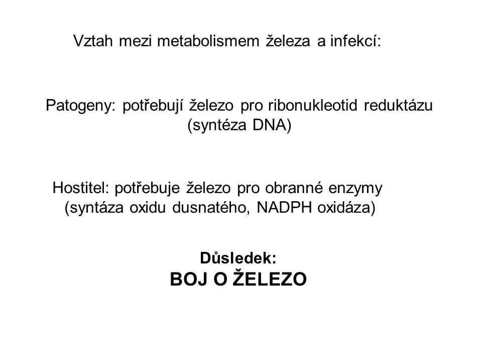 Vztah mezi metabolismem železa a infekcí: Patogeny: potřebují železo pro ribonukleotid reduktázu (syntéza DNA) Hostitel: potřebuje železo pro obranné enzymy (syntáza oxidu dusnatého, NADPH oxidáza) Důsledek: BOJ O ŽELEZO