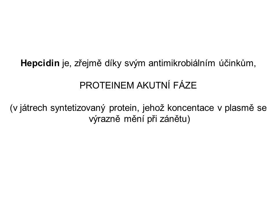 Hepcidin je, zřejmě díky svým antimikrobiálním účinkům, PROTEINEM AKUTNÍ FÁZE (v játrech syntetizovaný protein, jehož koncentace v plasmě se výrazně mění při zánětu)