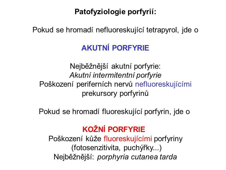 Patofyziologie porfyrií: Pokud se hromadí nefluoreskující tetrapyrol, jde o AKUTNÍ PORFYRIE Nejběžnější akutní porfyrie: Akutní intermitentní porfyrie Poškození periferních nervů nefluoreskujícími prekursory porfyrinů Pokud se hromadí fluoreskující porfyrin, jde o KOŽNÍ PORFYRIE Poškození kůže fluoreskujícími porfyriny (fotosenzitivita, puchýřky...) Nejběžnější: porphyria cutanea tarda
