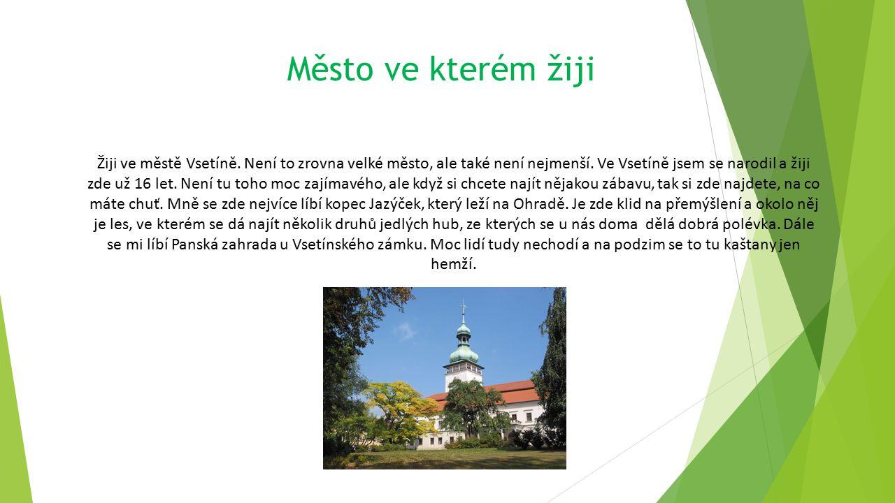 Město ve kterém žiji Žiji ve městě Vsetíně.Není to zrovna velké město, ale také není nejmenší.