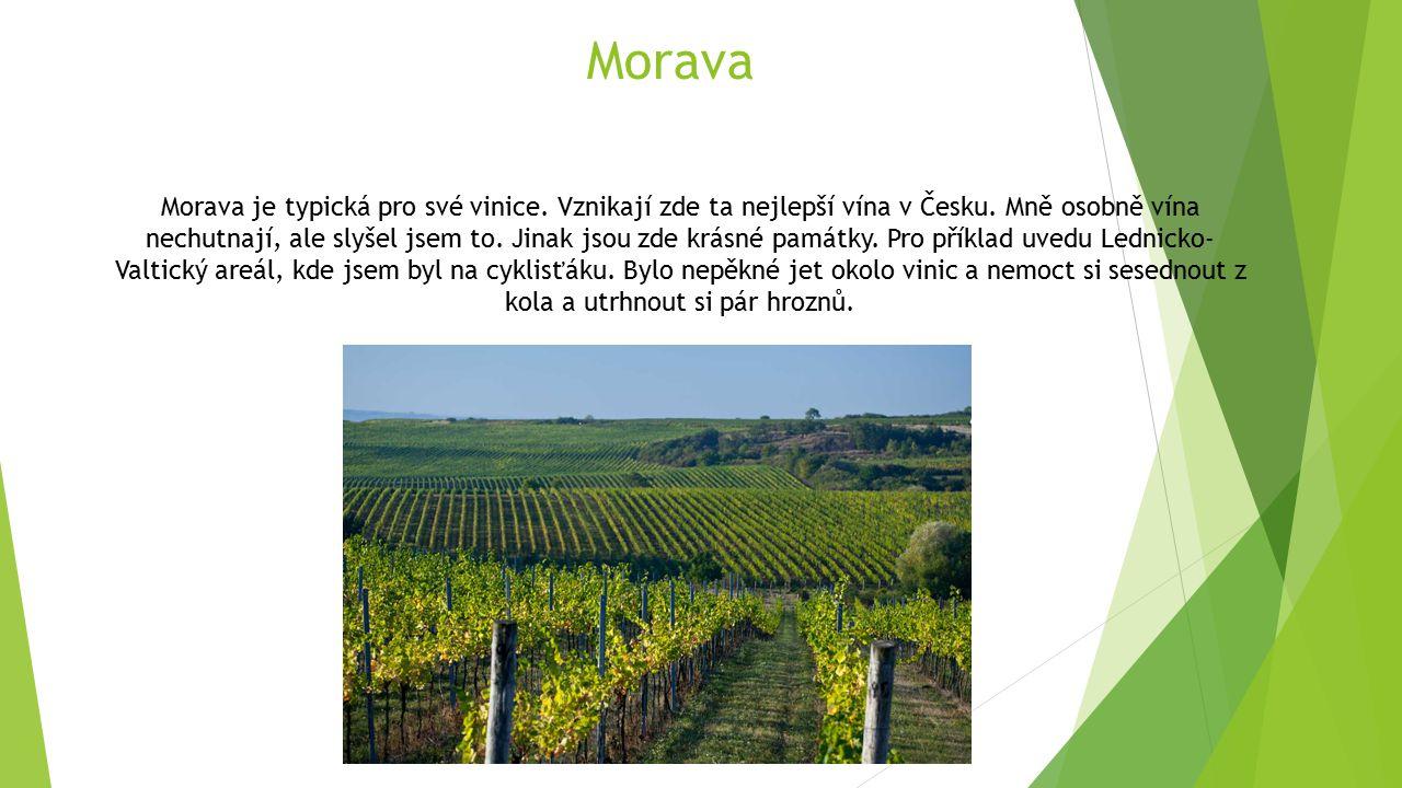 Morava Morava je typická pro své vinice. Vznikají zde ta nejlepší vína v Česku. Mně osobně vína nechutnají, ale slyšel jsem to. Jinak jsou zde krásné
