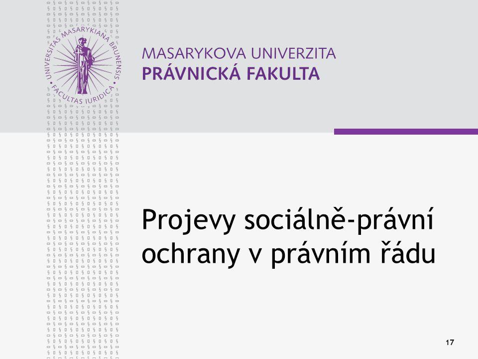 17 Projevy sociálně-právní ochrany v právním řádu