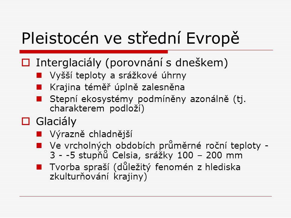 Pleistocén ve střední Evropě  Interglaciály (porovnání s dneškem) Vyšší teploty a srážkové úhrny Krajina téměř úplně zalesněna Stepní ekosystémy podm
