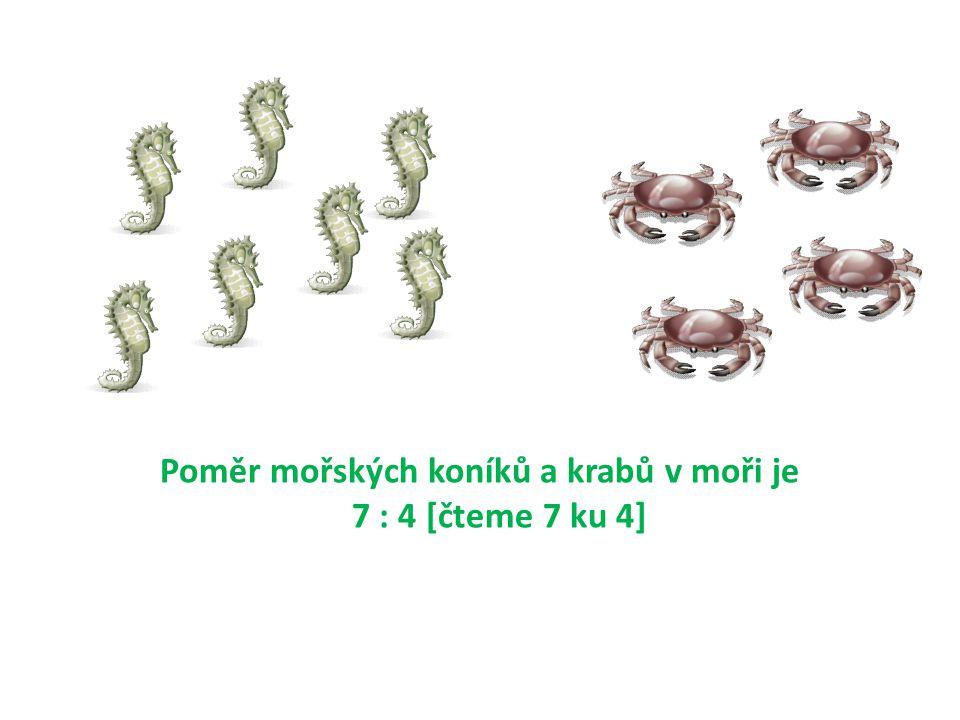 Poměr mořských koníků a krabů v moři je 7 : 4 [čteme 7 ku 4]
