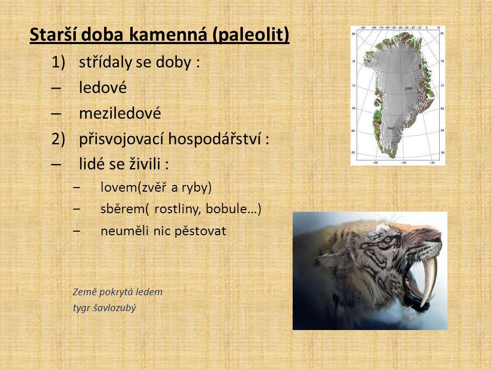 Starší doba kamenná (paleolit) 1)střídaly se doby : – ledové – meziledové 2)přisvojovací hospodářství : – lidé se živili : ‒lovem(zvěř a ryby) ‒sběrem