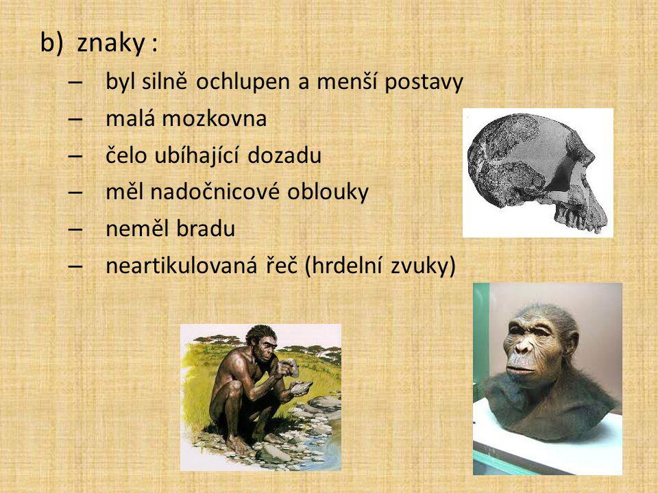 b)znaky : – byl silně ochlupen a menší postavy – malá mozkovna – čelo ubíhající dozadu – měl nadočnicové oblouky – neměl bradu – neartikulovaná řeč (h