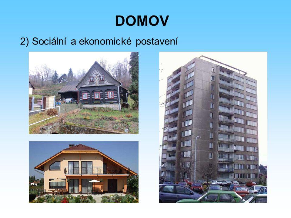 DOMOV 2) Sociální a ekonomické postavení