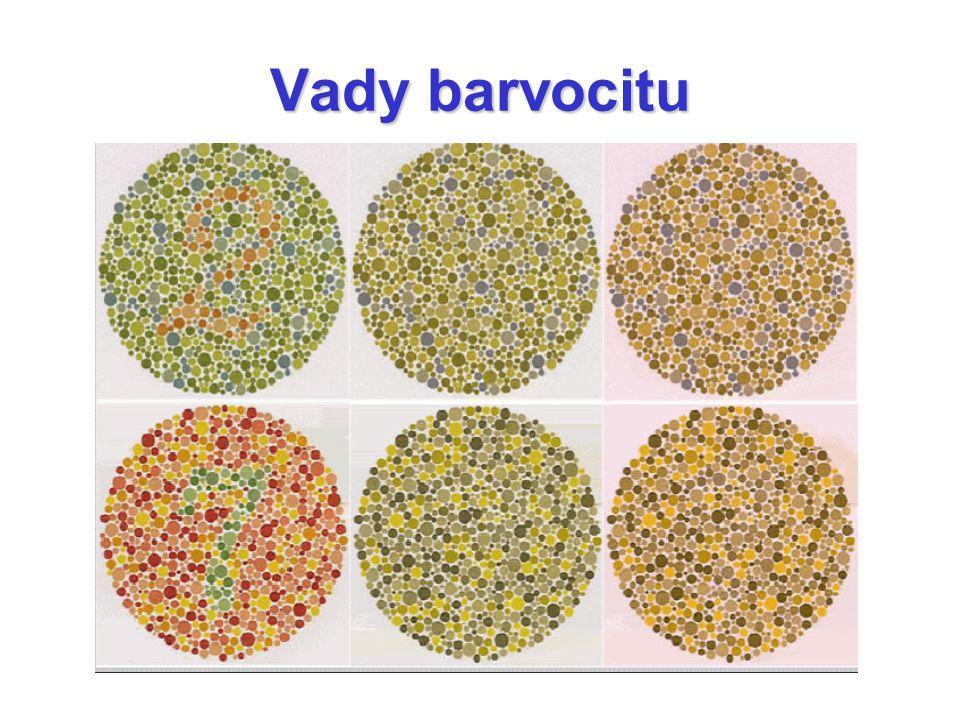 Tetrachromacie 4 různé receptory na vnímání barev pavouci, ptáci, plazy, některé ryby… až 50% žen
