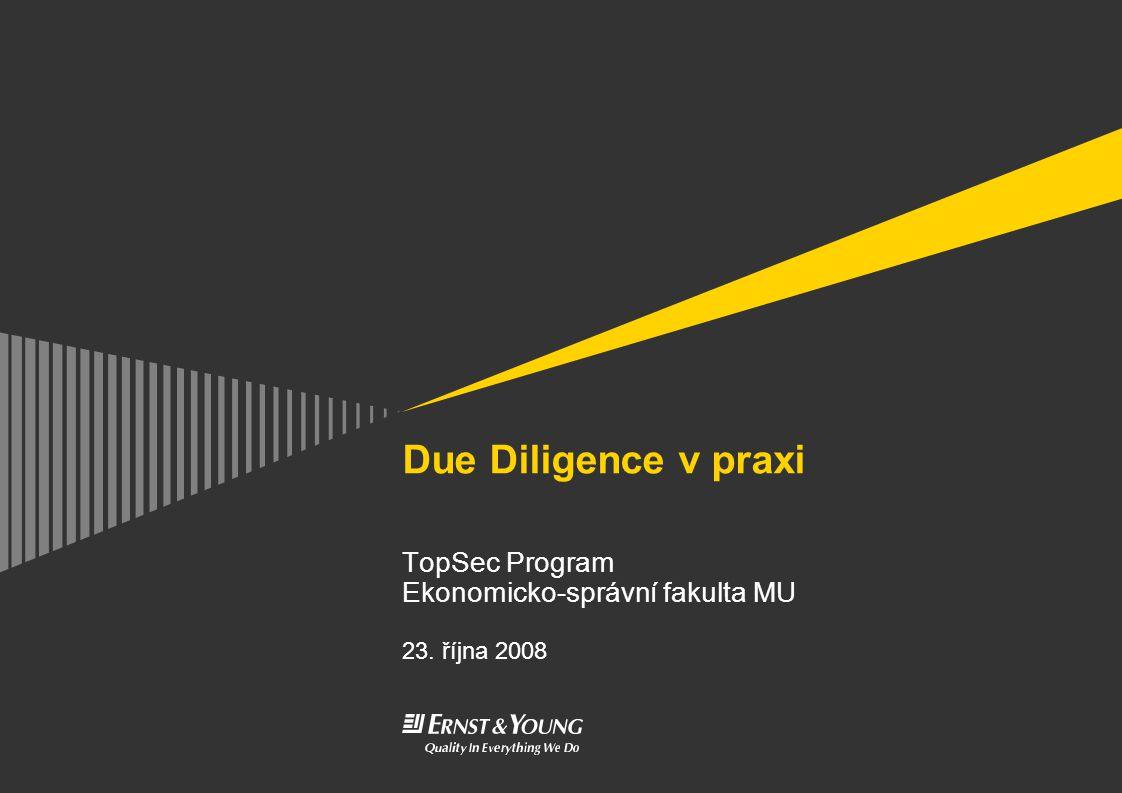 Due Diligence v praxi TopSec Program Ekonomicko-správní fakulta MU 23. října 2008