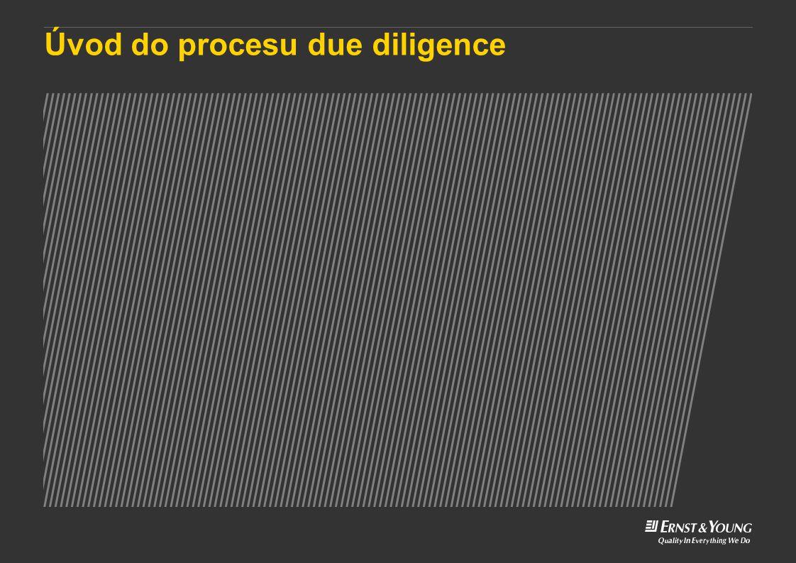 Úvod do procesu due diligence