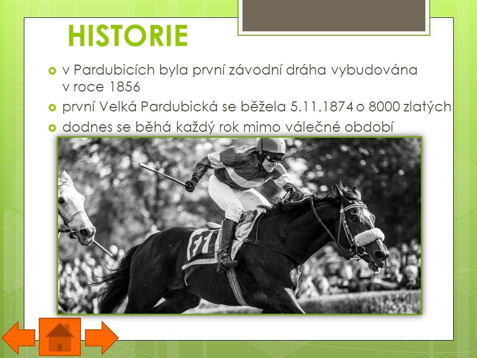 SOUČASNOST  Velká Pardubická je dostihový závod, konající se každou druhou říjnovou neděli v Pardubicích  je to nejtěžší dostihový závod v Evropě  dostihová dráha v Pardubicích měří 6900m a má 31překážek, koně ji proběhnou v rozmezí 9-10 min