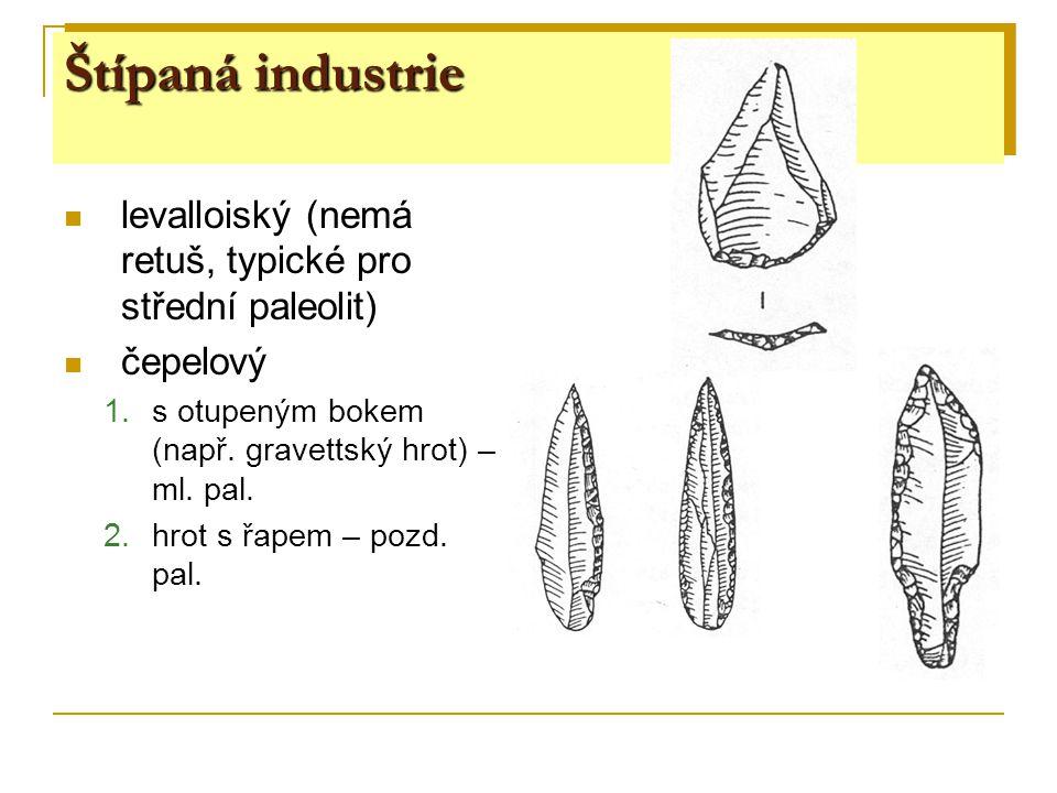 levalloiský (nemá retuš, typické pro střední paleolit) čepelový 1.s otupeným bokem (např. gravettský hrot) – ml. pal. 2.hrot s řapem – pozd. pal.