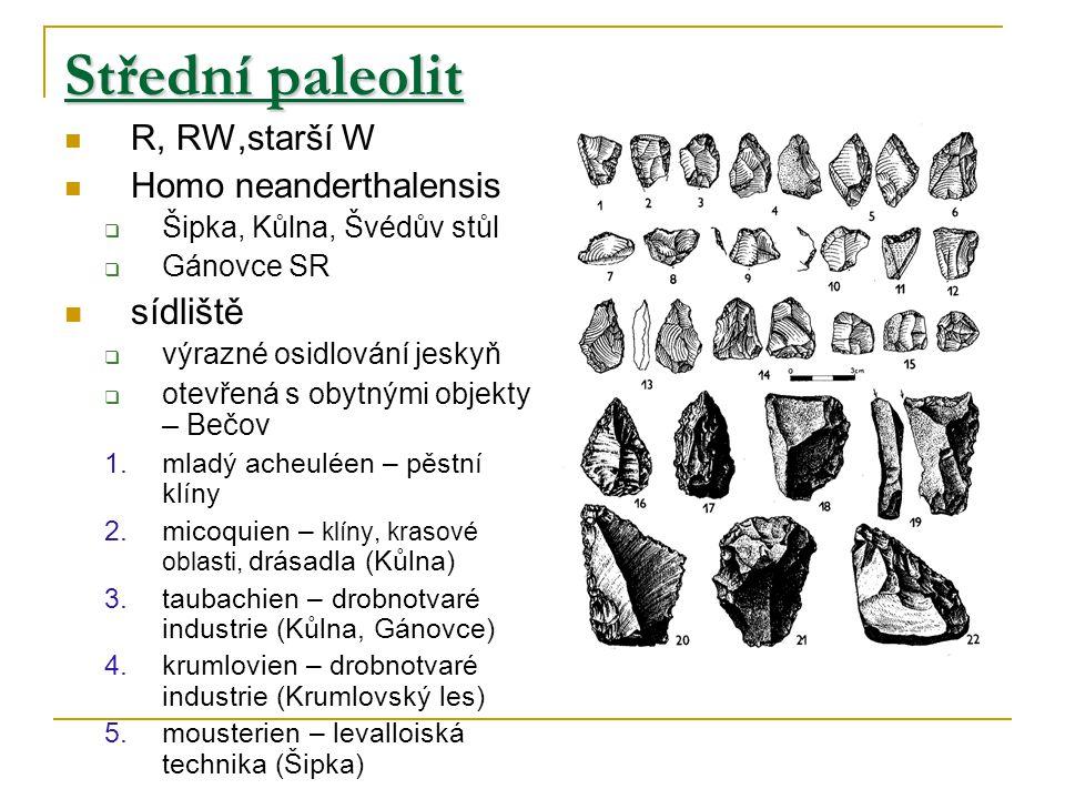 Střední paleolit R, RW,starší W Homo neanderthalensis  Šipka, Kůlna, Švédův stůl  Gánovce SR sídliště  výrazné osidlování jeskyň  otevřená s obytnými objekty – Bečov 1.mladý acheuléen – pěstní klíny 2.micoquien – klíny, krasové oblasti, drásadla (Kůlna) 3.taubachien – drobnotvaré industrie (Kůlna, Gánovce) 4.krumlovien – drobnotvaré industrie (Krumlovský les) 5.mousterien – levalloiská technika (Šipka)