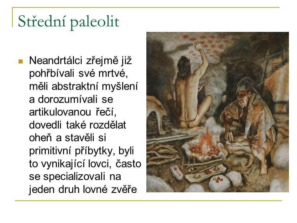 Střední paleolit Neandrtálci zřejmě již pohřbívali své mrtvé, měli abstraktní myšlení a dorozumívali se artikulovanou řečí, dovedli také rozdělat oheň a stavěli si primitivní příbytky, byli to vynikající lovci, často se specializovali na jeden druh lovné zvěře