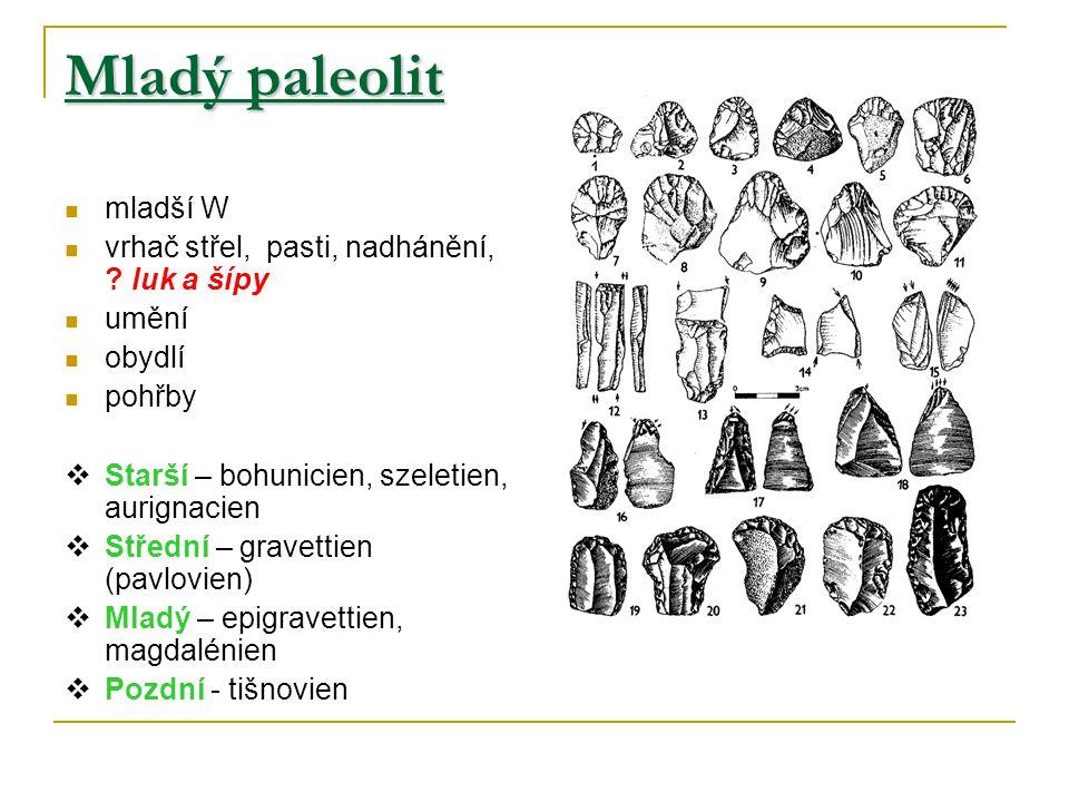 Mladý paleolit mladší W vrhač střel, pasti, nadhánění, .