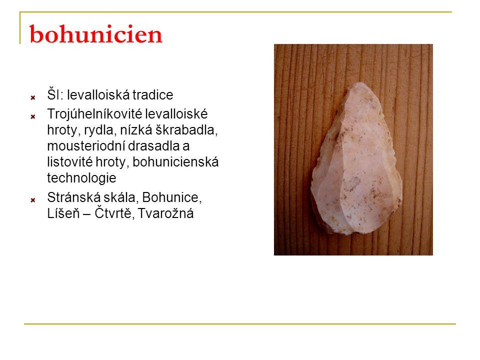 bohunicien ŠI: levalloiská tradice Trojúhelníkovité levalloiské hroty, rydla, nízká škrabadla, mousteriodní drasadla a listovité hroty, bohunicienská