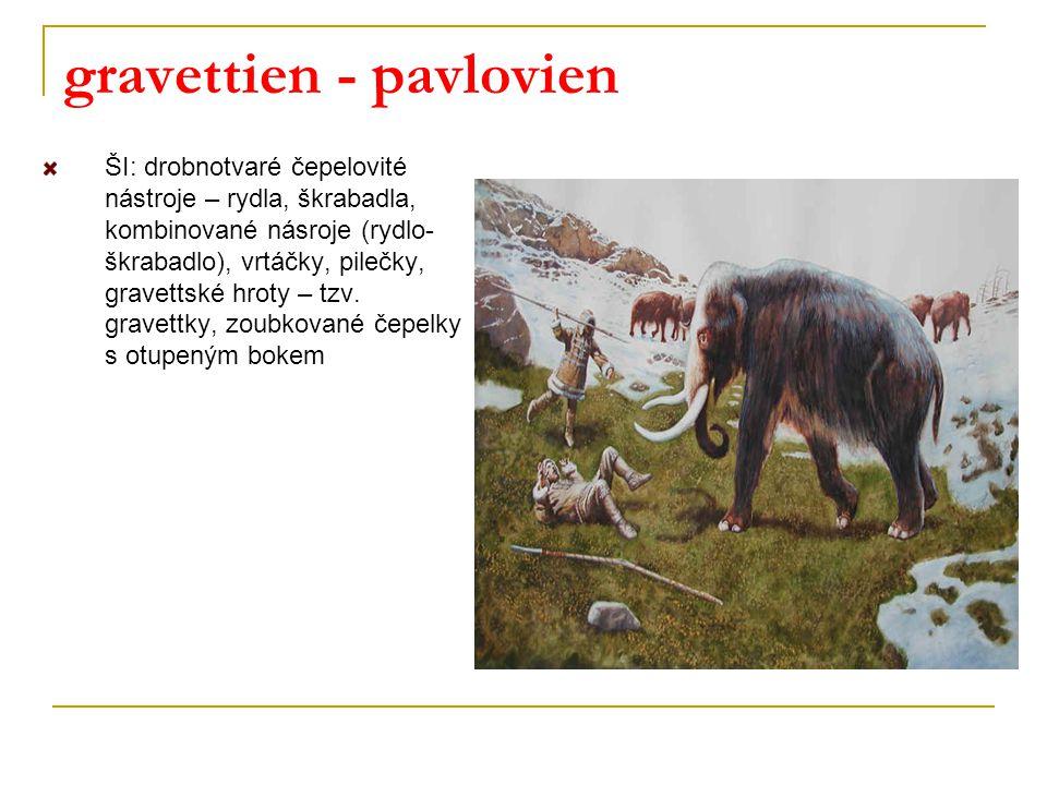 gravettien - pavlovien ŠI: drobnotvaré čepelovité nástroje – rydla, škrabadla, kombinované násroje (rydlo- škrabadlo), vrtáčky, pilečky, gravettské hr