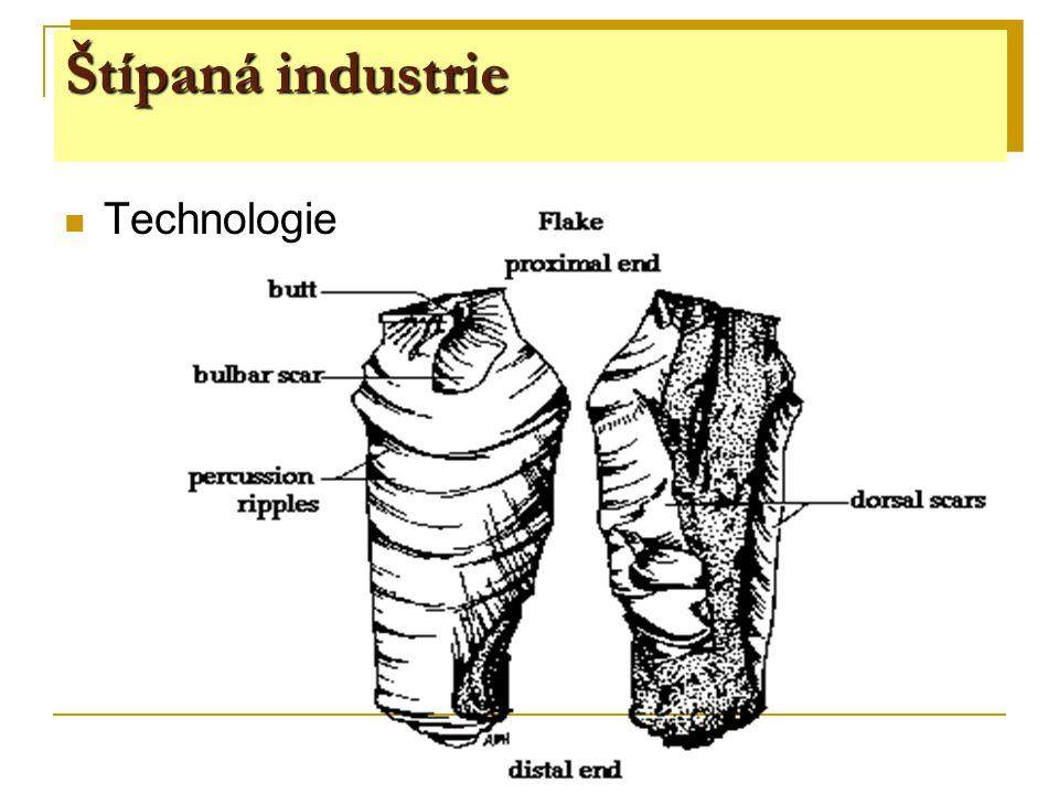 Štípaná industrie kost paroh mamutovina  drobná plastika a rytiny  náčelnické hole  lopatky  hroty  harpuny  jehly  přívěsky  otloukače Kostěná a parohová industrie
